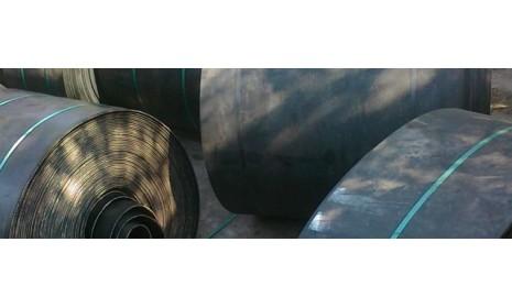 Лента норийная БКНЛ65 на 2 - 8 прокладок
